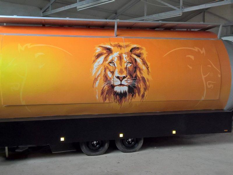 Lion_1